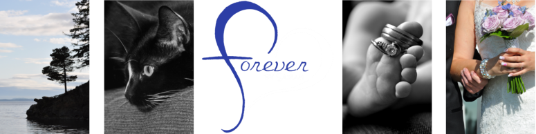 Forever by Sarah